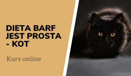 Dieta BARF jest prosta kot
